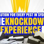 Knockdown Pest Control